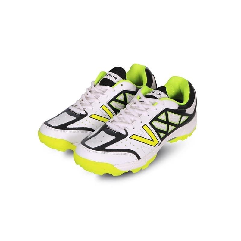 Shoes Shoes Vector Cricket Shoes
