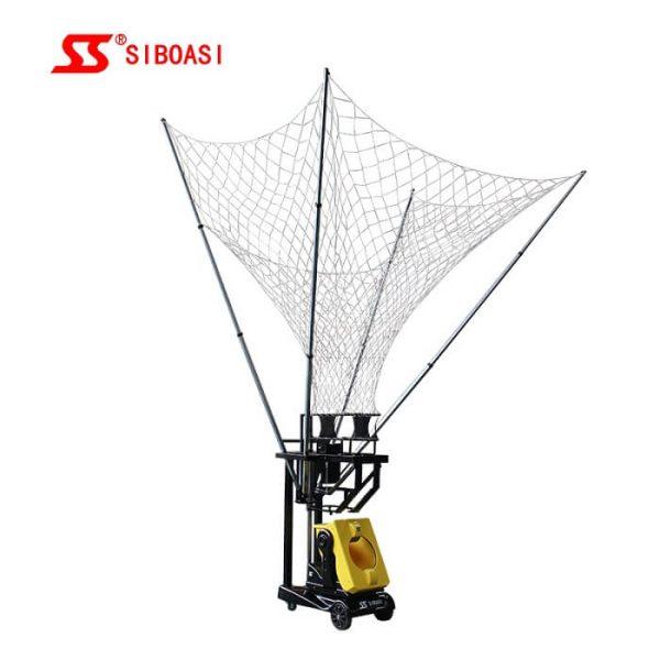 Siboasis-S6829